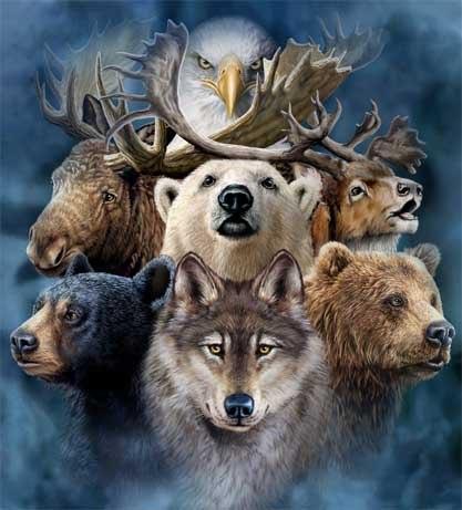 Животные-покровители или Тотемы